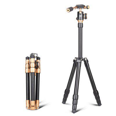 QZSD Q066 Tripod with 360 Degree Swivel Ball Head