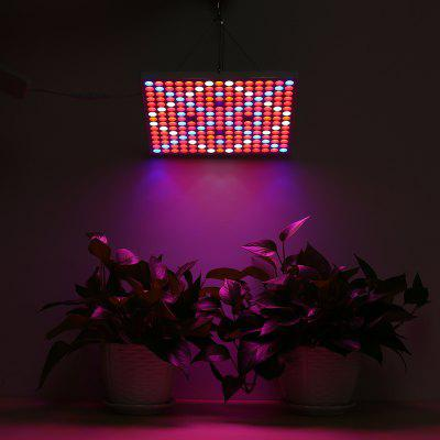 Lampwin 45W 6-Band Full Spectrum Including UV IR Grow Light Suitable for Indoor Cultivating and Bonsai Lighting EU 2pcs 600w 800w 1000w double chips led grow light full spectrum lamp for indoor plants and flower led aquarium led grow box tent