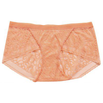 Women Lace Trim See Through Underwear Panty