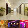 1PCS YWXLight 5M 5050SMD 72W 300LEDs NO-Waterproof LED Strip Strip Light Strip DC 12V - VERDE
