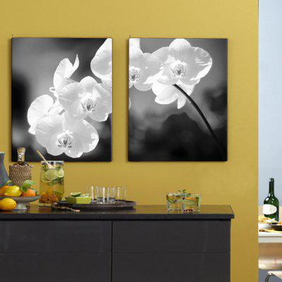 ART Black and White Flowers Pictures Printed on Canvas 2 panels