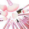 Todo 22PCS Pink Professional Cosmetic Soft Brush Set for Makeup - PINK