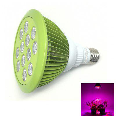 Youoklight 1PCS E27 24W Ac 85 ~ 265V 12 - Led Plant Grow Light - Mint Green