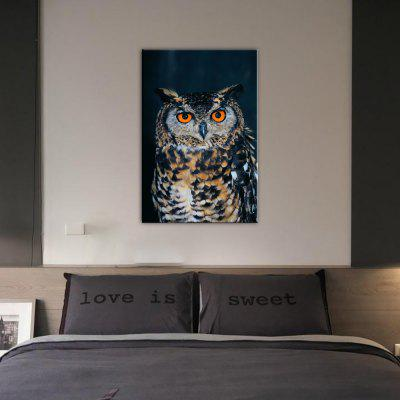 Buy BLACK AND ORANGE Yhhp Animal Owl Picture Print Modern Wall Art On Canvas Unframed for $12.09 in GearBest store
