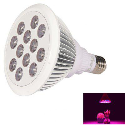 Youoklight 1PCS E27 24W Ac 85 - 265V 12LED Ip55 Plant Grow Light