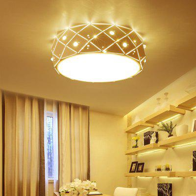 Ever - Flower Modern Simple LED Ceiling Light Mount with White Color Painted Finish