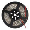 Kwb Led Strip Lights 2835 Smd 300LEDS 5M/ROOL White / Warm White / Red / Green / Blue - WHITE