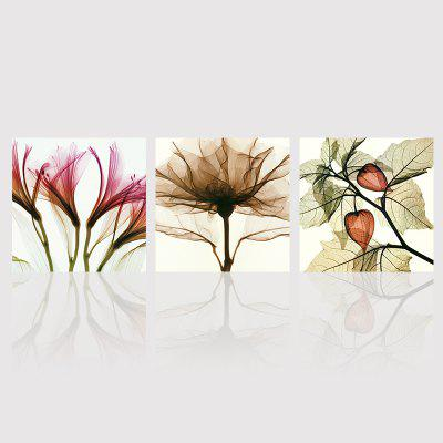 Buy COLORMIX 50CMX50CMX3 Hx-Art No Frame Triple Abstract Canvas Painting Flower Living Room Decorated In Modern Minimalist Paintings for $18.03 in GearBest store