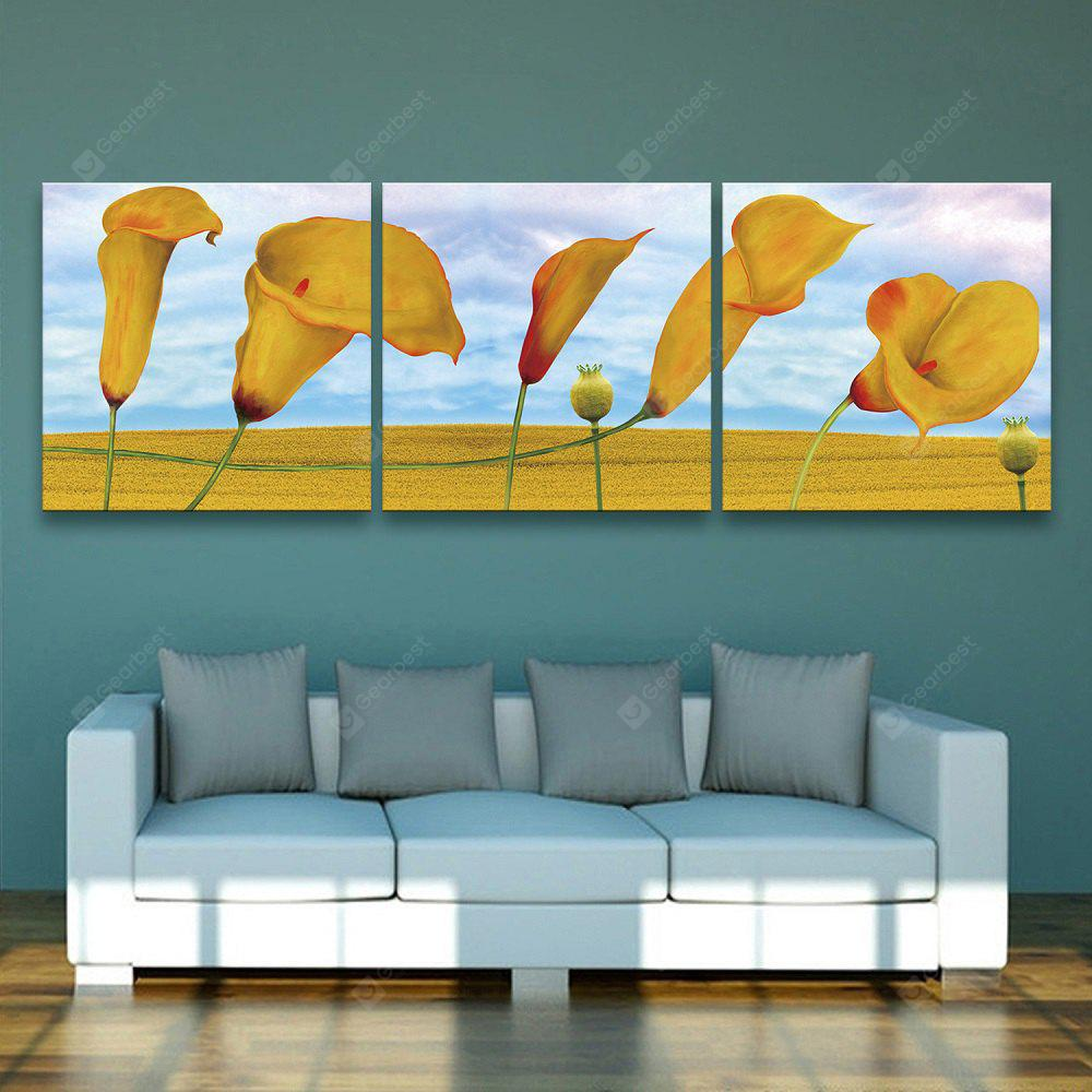 Yc Special Design Frameless Paintings Morning Glory of 3