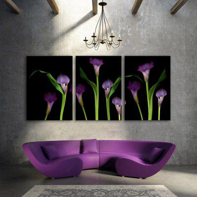 Yc Special Design Frameless Paintings callas of 3