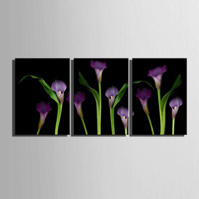 Yc Special Design Frameless Paintings callas of 3Prints<br>Yc Special Design Frameless Paintings callas of 3<br><br>Craft: Print<br>Form: Three Panels<br>Material: Canvas<br>Package Contents: 3 x Print<br>Package size (L x W x H): 55.00 x 75.00 x 2.00 cm / 21.65 x 29.53 x 0.79 inches<br>Package weight: 1.2600 kg<br>Painting: Include Inner Frame<br>Shape: Horizontal Panoramic<br>Style: Vintage, Fashion, Novelty, Formal, Casual, Active<br>Subjects: Flower<br>Suitable Space: Indoor,Garden,Living Room,Bathroom,Bedroom,Dining Room,Office,Hotel,Cafes,Kids Room,Kids Room,Study Room / Office,Boys Room,Girls Room,Game Room