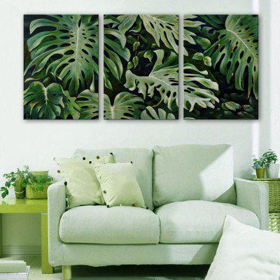 Yc Special Design Frameless Paintings Monstera of 3