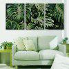 Yc Special Design Frameless Paintings Monstera of 3 - GREEN