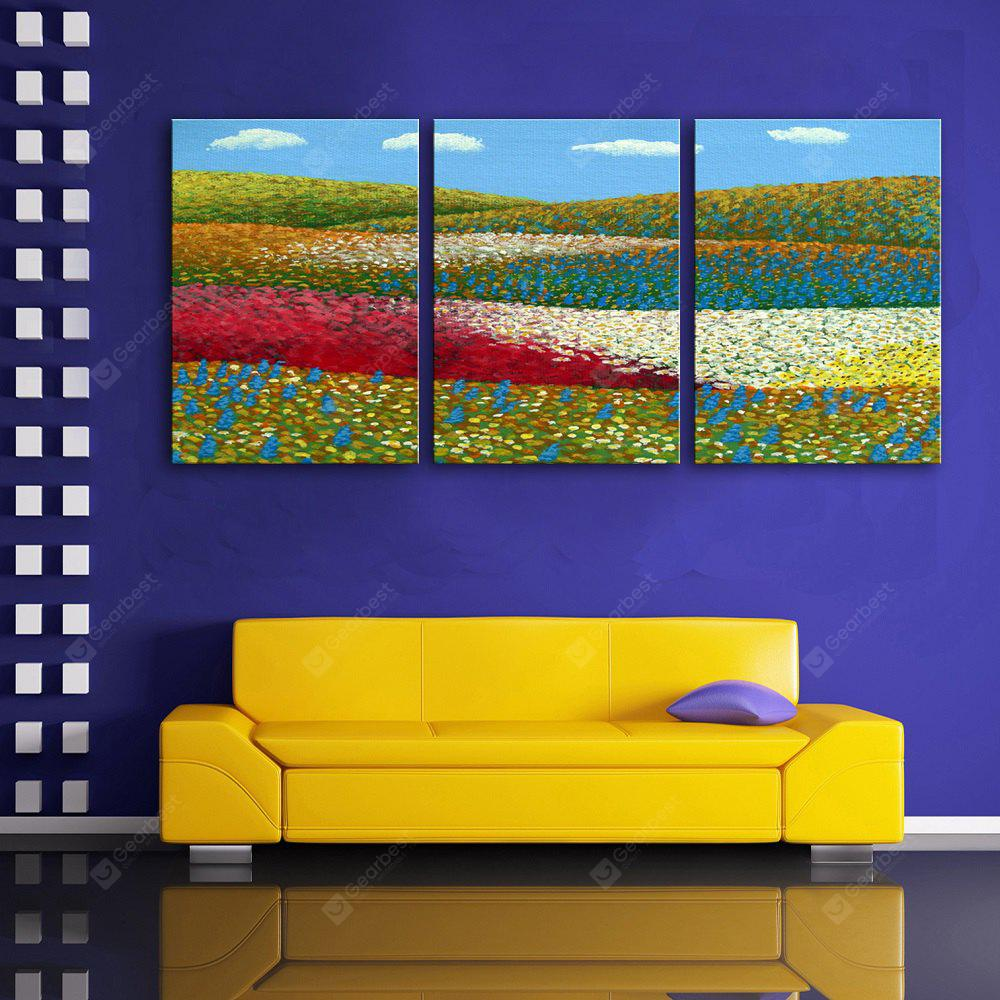 Special Design Frameless Paintings Flowers and Fields of 3PCS