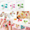 36PCS Natural Dried Flower Nail Art Decoration - COLORMIX