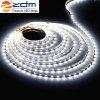 ZDM Waterproof 5M 300 x 3528 LED Light Strip with AC / DC Transformer - COLD WHITE LIGHT