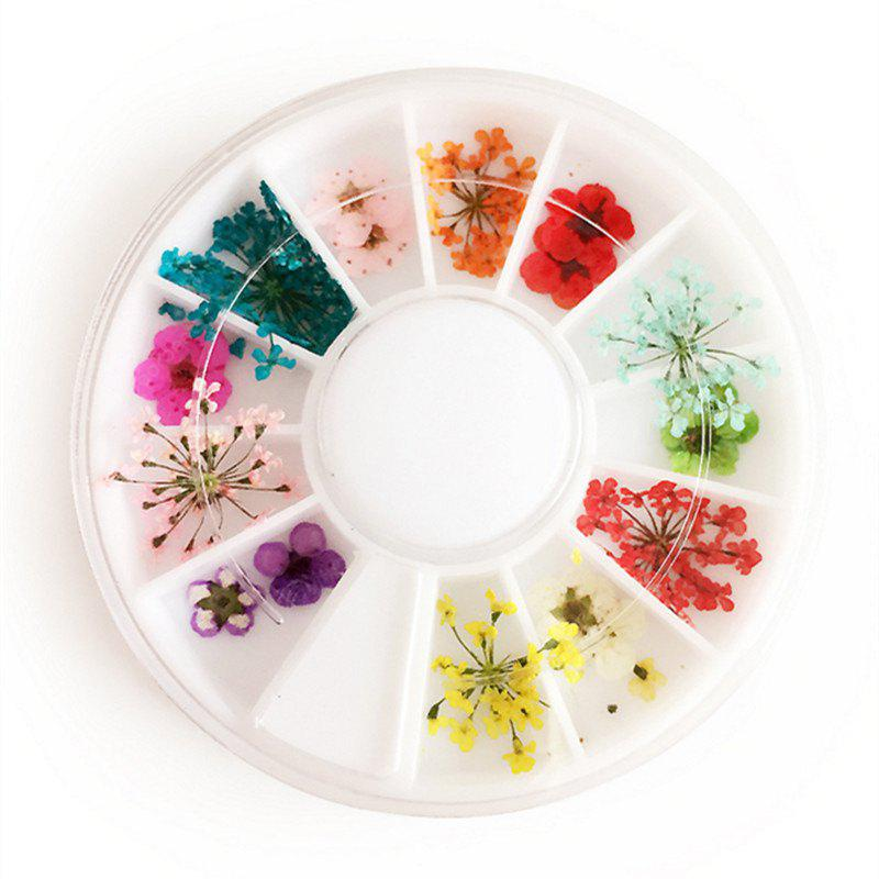 1 Box Mixed Style Natural Dried Flower Nail Art Decoration