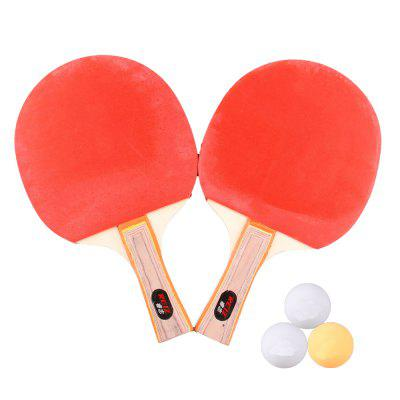 REIZ 2301 Short or Long Handle Shake-Hand Table Tennis Set 2 Rackets + 3 Balls Ping Pong Paddle