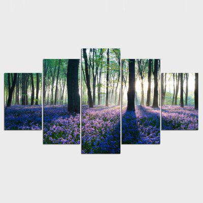 Buy YSDAFEN 5 Panels HD Early Morning Lavender Giclee Canvas Wall Art COLORMIX for $55.38 in GearBest store