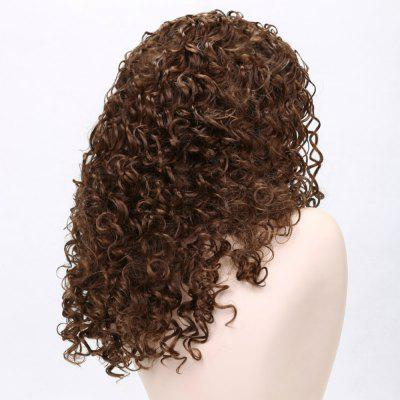 Long Afro Small Curly Hair Synthetic Wigs - Chestnut Color synthetic hair wigs new available