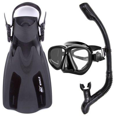 2017 HOT Whale Water Sports Diving Equipment Scuba Diving Mask Diving Snorkel and Diving Flippers Black Red Blue Yellow MK500+SK900+BA200