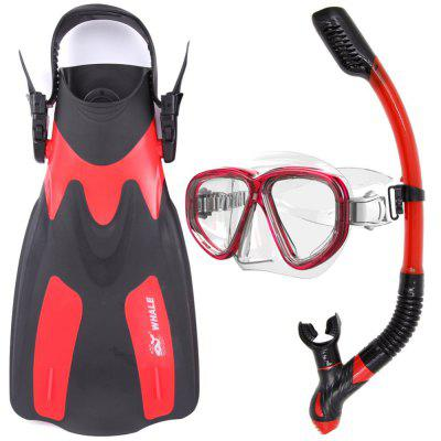 Whale Water Sports Diving Equipment Scuba Diving Mask Diving Snorkel and Diving Flippers Black Red Blue Yellow MK500+SK900+FN200