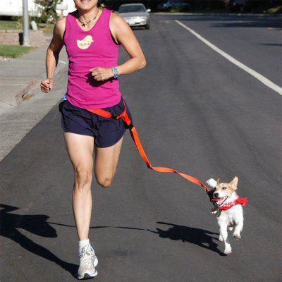 Buy Waist Pet Dog Leash Running Jogging Puppy Dog Lead Collar Sport Adjustable Walking Leash BLUE for $7.13 in GearBest store