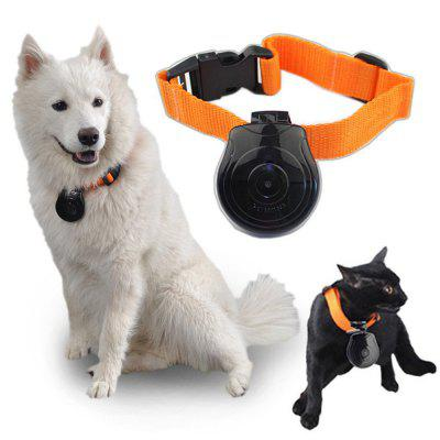 Digital Pet Collar Cam Camera Mini Video Recorder Cam ...