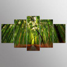 YSDAFEN 5 Panel Canvas Art Printed Forest Bamboo Path Canvas Print Room Decor