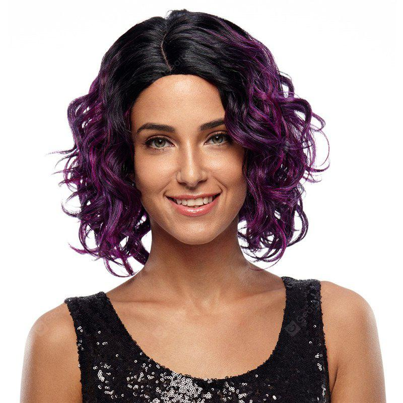 Rebecca Ombre Synthetic Hair Medium Slight Wave Curly Wig 13 Inch RC0667