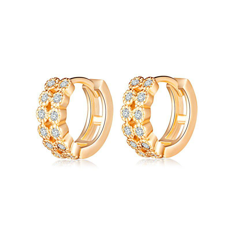 Fashion  Zircon Earrings ER0148