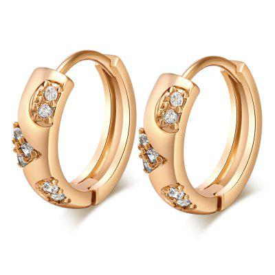 Trendy Zircon Earrings ER0251