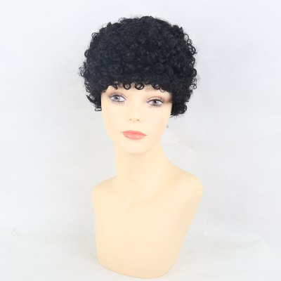 Human Hair Wigs  Vibrant African Short Curly Hair
