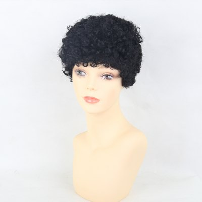 Human Hair Wigs Simple And Fashionable Small African Curls