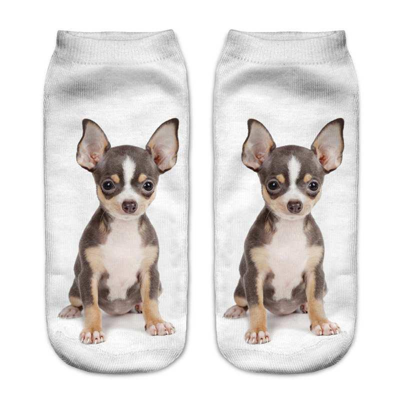 WHITE 3D Printed Cute Little Dog Women'S Casual Socks S010