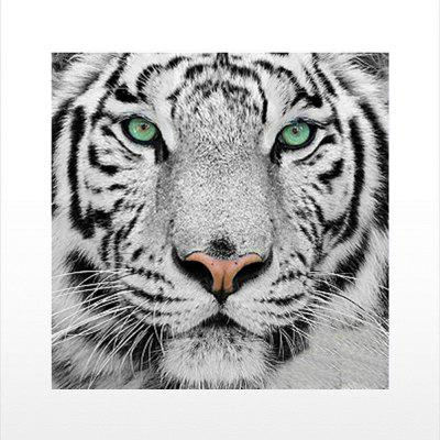 Naiyue 9533 The Tiger Print Draw Disegno a rombi