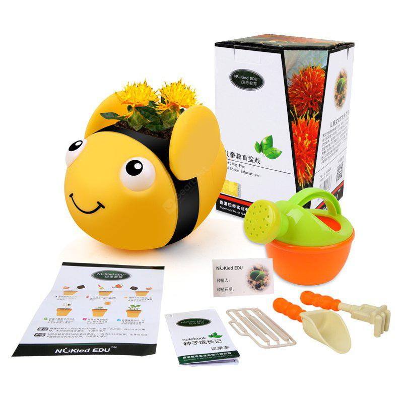 Kid's Planting Toy Cute Bee Shaped Flowerpot Safflower Growing Toy