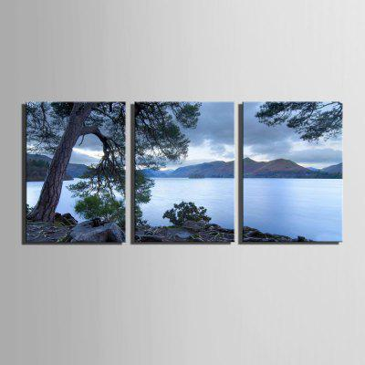 Special Design Frameless Paintings The Pine Tree Print 3PCSPrints<br>Special Design Frameless Paintings The Pine Tree Print 3PCS<br><br>Craft: Print<br>Form: Three Panels<br>Material: Canvas<br>Package Contents: 3 x Print<br>Package size (L x W x H): 52.00 x 38.00 x 5.00 cm / 20.47 x 14.96 x 1.97 inches<br>Package weight: 1.5000 kg<br>Painting: Include Inner Frame<br>Product size (L x W x H): 50.00 x 35.00 x 1.50 cm / 19.69 x 13.78 x 0.59 inches<br>Product weight: 1.4000 kg<br>Shape: Vertical Panoramic<br>Style: Vintage, Fashion, Active, Formal, Casual, Novelty<br>Subjects: Fashion<br>Suitable Space: Indoor,Outdoor,Cafes,Kids Room,Kids Room,Study Room / Office