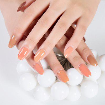ZD NH06 Nude Color Series Nail Polish 6pcs/box