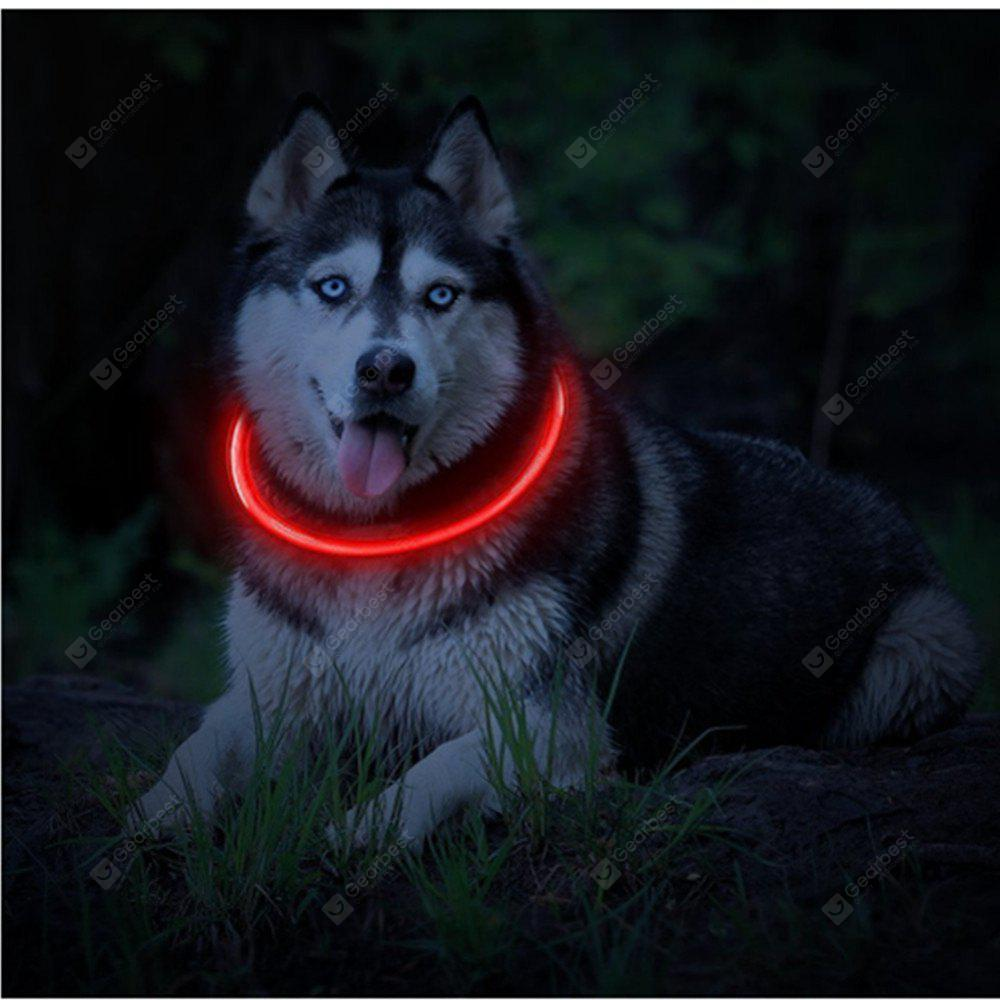 safety collar up led walk flashing dog night itm light leash nylon bright leads pet color