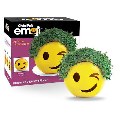 Chia Emoji Handmade Decorative Planter