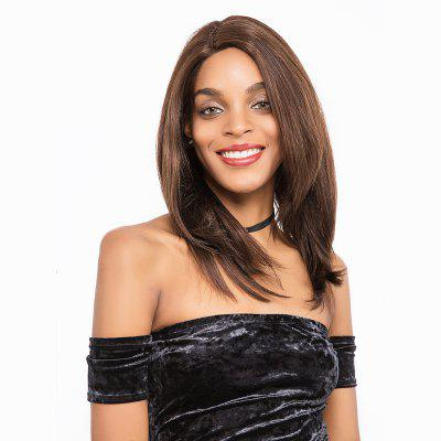 Remy Human Hair Lace Frotnal Wig Human Hair Straight Mid-lenght Wig 12 Inch RY11