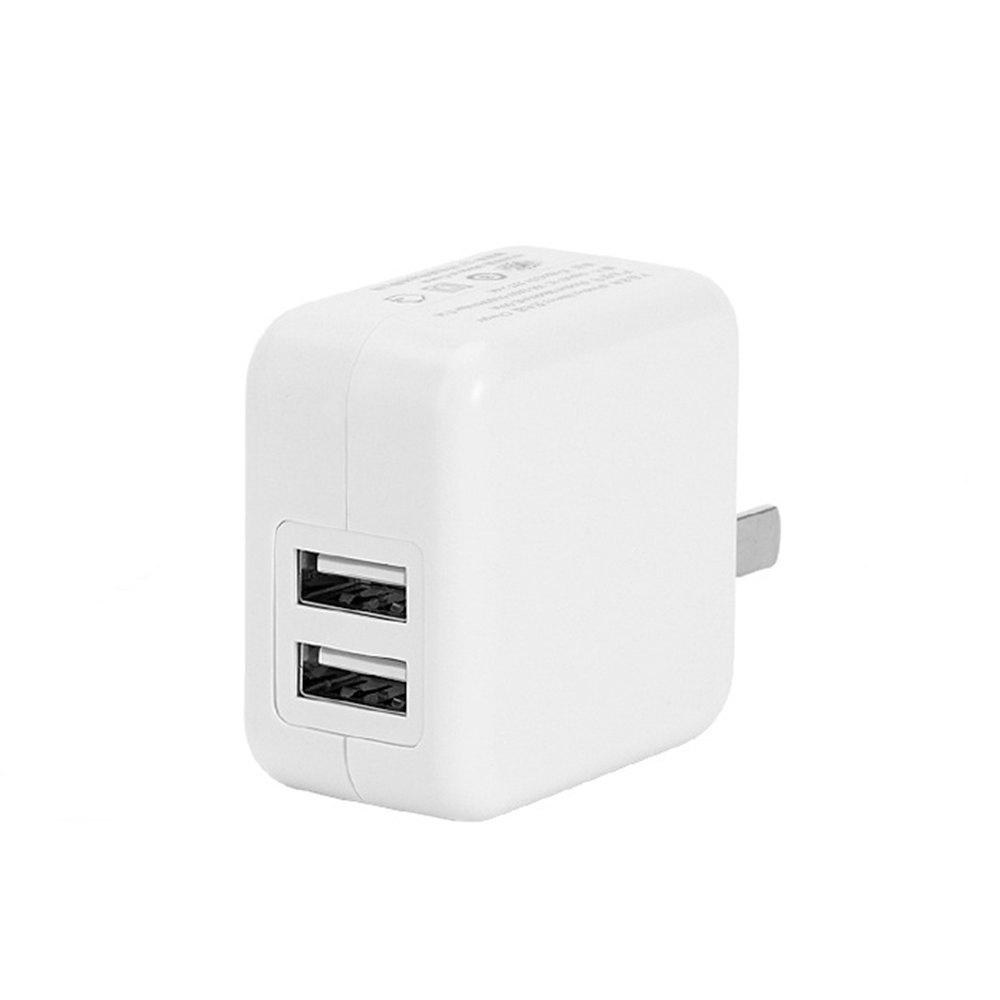 Travel USB Adapter EU Plug Universal 2-PORT Wall Portable Phone Charging Smart Charger for IPhone Tablets