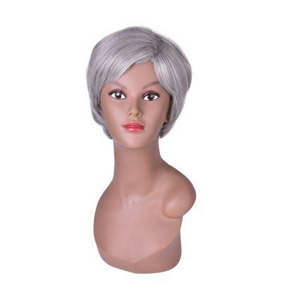 Buy GRAY Hairyougo 2098 6 inch Short Straight Synthetic Wig Silver Grey Color Cosplay Party High Temperature Fiber Hair for $24.90 in GearBest store