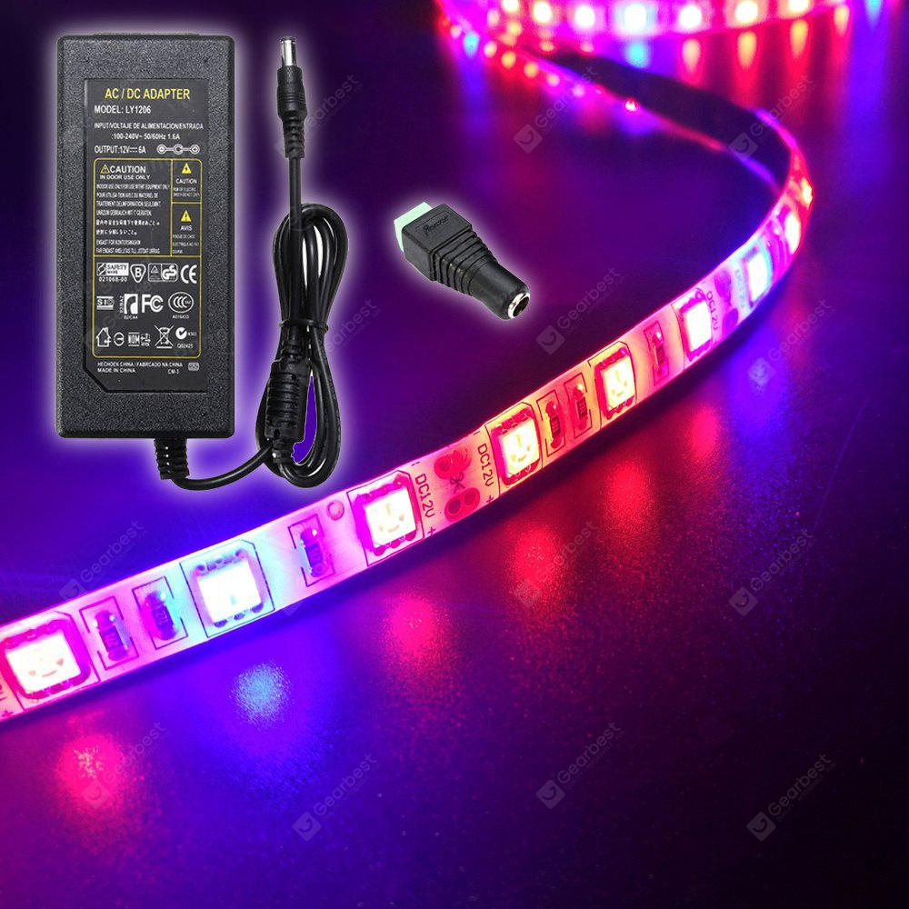 ZDM 5M Waterproof 72W 300 x 5050 LED Plant Grow Strip Ligh 6A EU Power Supply AC110-240V  with 1PC DC Female Connector