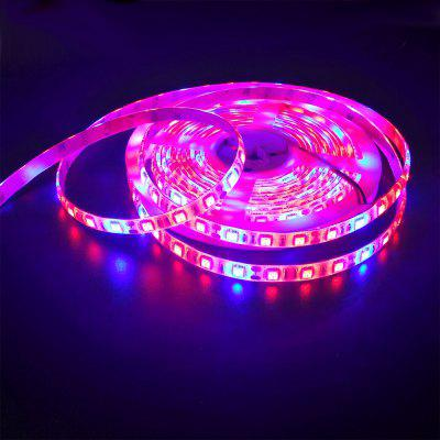 ZDM 5M Waterproof 70W 5050  RED and Blue / Group LED Plant Light Strip DC12V