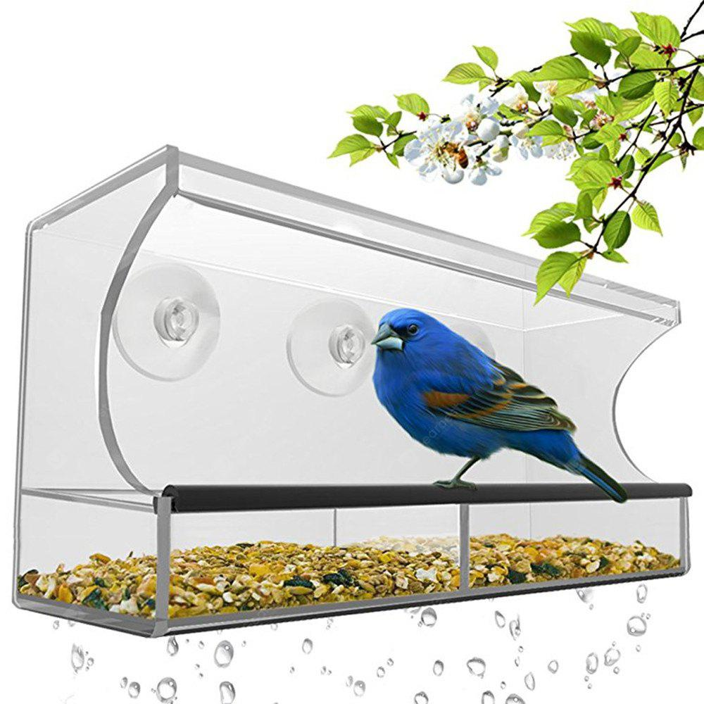 Nature Is Hangout Window Bird Feeder with Removable Tray Drain Holes and 3 Free Extra Suction Cups