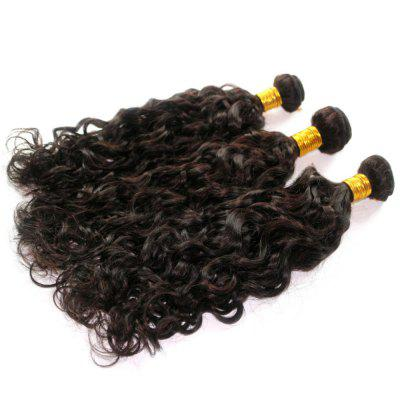 Natural Wave 100 Percent Brazilian Human Virgin Hair Weave 3pcsHair Weaves<br>Natural Wave 100 Percent Brazilian Human Virgin Hair Weave 3pcs<br><br>Can Be Permed: Yes<br>Chemical Processing: None<br>Color: Natural Black<br>Color Type: Pure Color<br>Hair Grade: 6A+ 100% Unprocessed Virgin Hair<br>Hair Quality: Virgin Hair<br>Hair Weft: Machine Double Weft<br>Material: Human Hair<br>Package Contents(pcs): 3 x Hair Weave<br>Package size (L x W x H): 20.00 x 10.00 x 5.00 cm / 7.87 x 3.94 x 1.97 inches<br>Package weight: 0.3500 kg<br>Source: Brazilian Hair<br>Style: Natrual Curl<br>Type: Human Hair Weaves