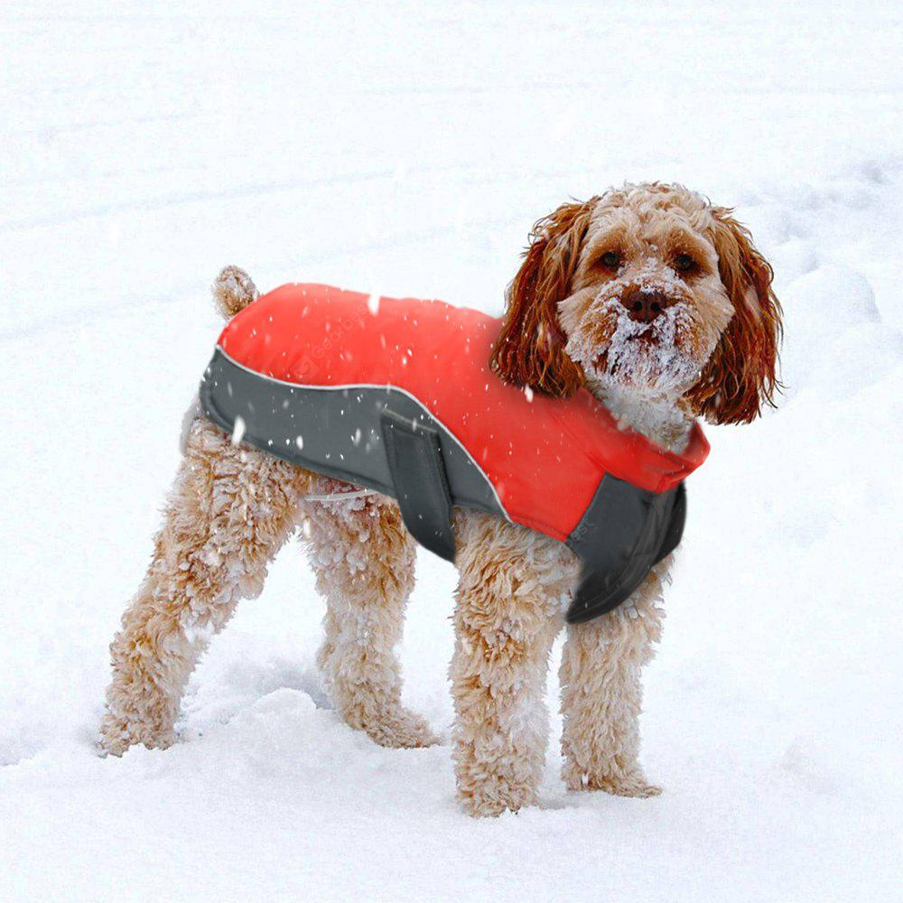 Lovoyager BL -674 New Style Dog Warm Clothing for Winter Outdoor
