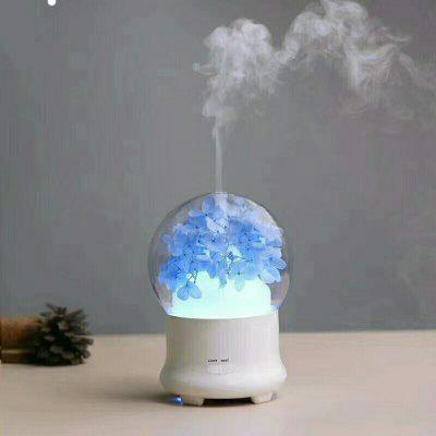 Mini-Flower Aroma of Dried Flowers Night Light Ultrasonic Humidifier Essential Oil Aromatherapy Machine Home Office